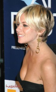 https://hairstylespic.files.wordpress.com/2011/08/shorthairstylesforwomen1.jpg?w=182